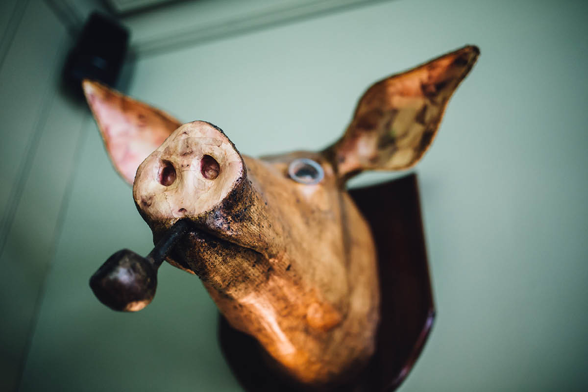 Pig Hotel Brockenhurst Wedding Pig Head