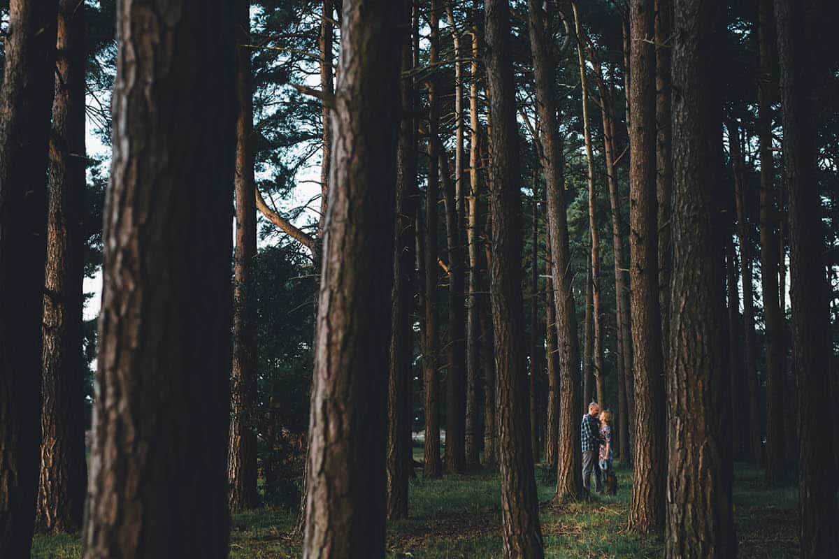 New Forest Engagement Photography - amongst the pines